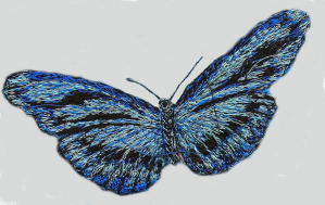 30. The process of creating The butterflys
